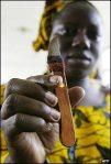 Cuchilla de Mutilación